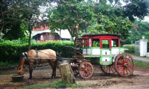 horse-cart-pyin-oo-lwin-myanmar1ssssssssssssss